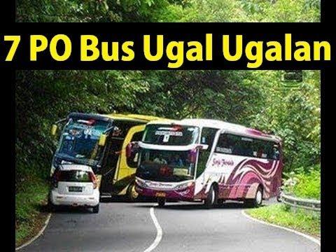 Download Video 7 PO BUS Terkenal Ugal - Ugalan Di Jalan