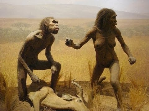 The Evolution From Ape To Man - Full Documentary