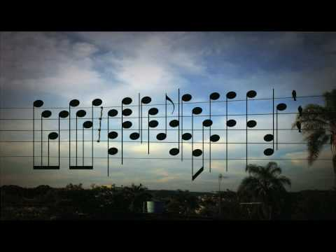 Guy saw a picture of birds on the electric wires, cuts out the photo and decided to make a song, using the exact location of the birds as notes.
