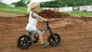 Live Free[er] | Harley-Davidson
