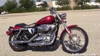 8. Used 2005 Harley Davidson Sportster 1200 Custom Motorcycles for sale