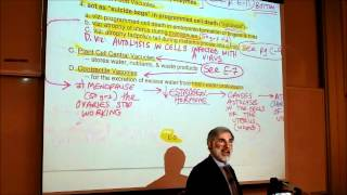 BIOLOGY; CYTOLOGY; PART 3 By Professor Fink