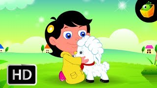 Mary had a Little lamb - English Nursery Rhymes - Animated/ Cartoon Songs For Kids