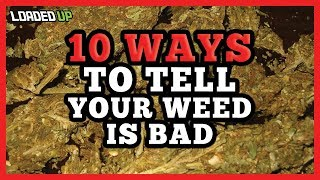10 Ways To Tell Your Weed Is Bad Quality by Loaded Up