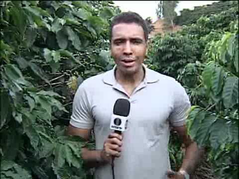 São Sebastião do Anta  na Globo.