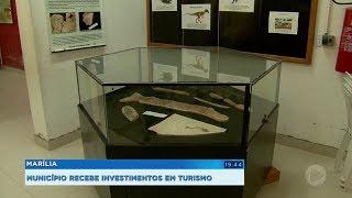 Investimentos em turismo podem possibilitar a reabertura do museu de paleontologia