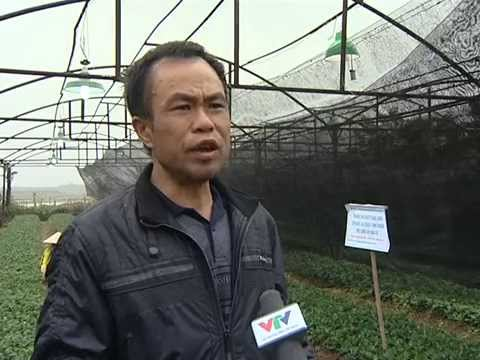 Phát biểu của ông Nguyễn Văn Bình (Đền Đô - Bắc Ninh)