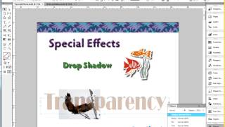 Donna Caldwell CS 72 11A Adobe InDesign 1 Special Effects Intro 04 21 2013