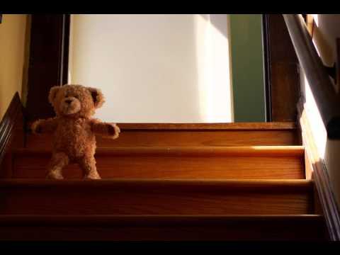 泰迪熊迎接他這輩子最好的朋友【超溫馨~】
