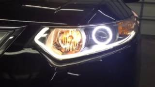 Custom halo and switch back lights on an Acura TSX