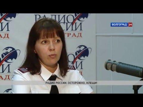 Мария Таратутина, заместитель начальника отдела управления Роспотребнадзора по Волгоградской области