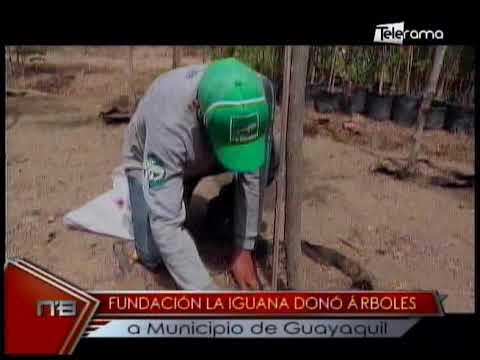 Fundación La Iguana donó a árboles a municipio de Guayaquil