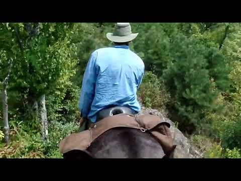 Smoky Mountain Back Country Horse Camping Part I