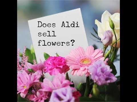Does Aldi sell flowers fresh cut