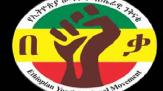 Press Release From The Ethiopian Youth National Movement