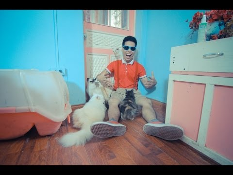 THO CA - DUBSTEP DANCING CAT-ROOM