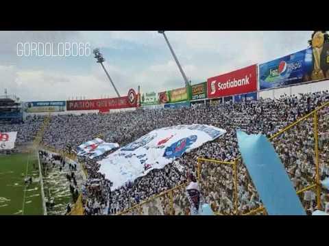 RECIBIMIENTO ALIANZA FC 2017,  FINAL ALIANZA FC  VS SANTA TECLA 2017 , BARRA BRAVA 96 , ULTRA BLANCA - La Ultra Blanca y Barra Brava 96 - Alianza - El Salvador - América Central