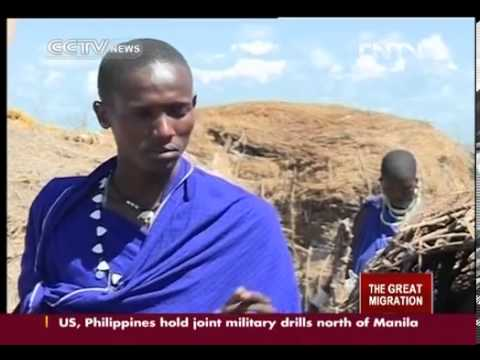 Maasai - The Maasai are one of the most famous tribes in east Africa. The community has preserved its unique ancient culture, despite the wave of modernization that h...
