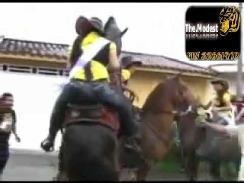 حصان ينيك بنت