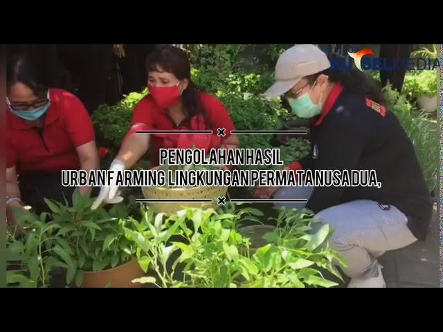 Pengolahan-Bio-Enzim-dan-Hasil-Urban-Farming-Di-Lingkungan-Permata-Nusa-Dua.html