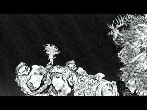 Emily Loizeau – Vole le Chagrin des Oiseaux