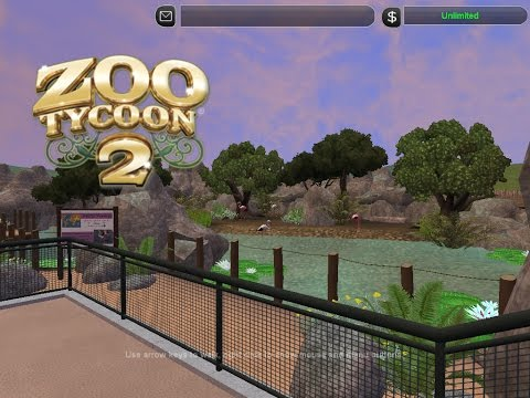 ZT2 Subscriber Zoo Series Ep.5: Flamingos