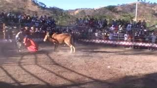 Toreo Del Bueno En Tacachico,El Conejo Y La Torta Mexicana De Chalatenango
