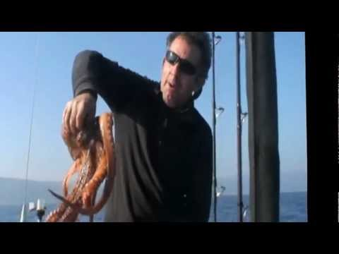 snapper ΤΑ ΤΣΑΟΥΣΙΑ-Ν21 ΚΑΙ ΤΟ ΧΤΑΠΟΔΙ sotos fishing.wmv
