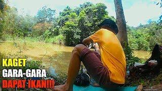 Download Video Bertubi Tubi Strike Ikan Sepat MP3 3GP MP4