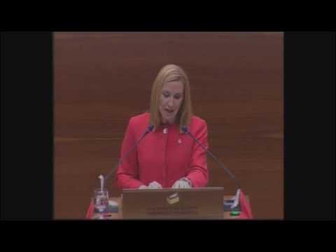 """Ana Beltrán, en el debate de la derogación de la Ley de Símbolos de Navarra: """"Nuestra bandera es la roja, la de las cadenas"""""""