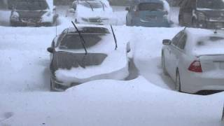 Ewing (NJ) United States  city photo : The blizzard of 2016 January 23rd Ewing Township NJ 08618