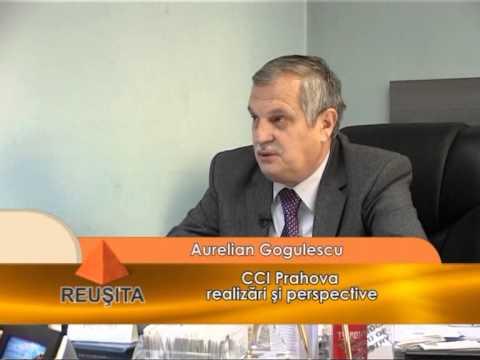 Emisiunea Reușita – Aurelian Gogulescu – 17 ianuarie 2015