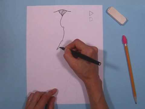 2 How to draw the Nile River
