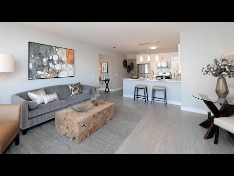 Tour a South Loop 1-bedroom model at 1001 South State
