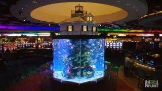 Wind Creek Casino Custom Aquarium | Tanked