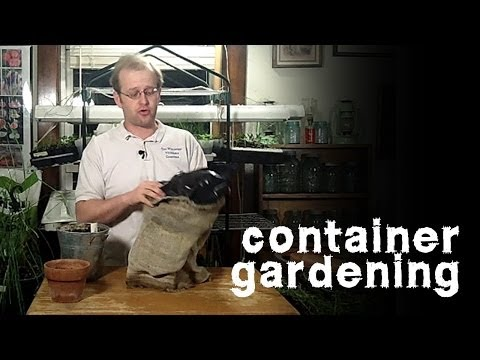 Container Gardening Options & Don't Kill Your Soil