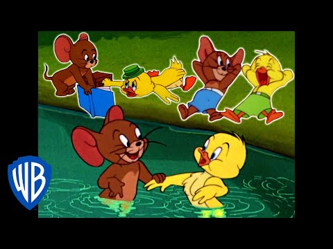 Tom & Jerry | Best Of Jerry And Little Quacker | Classic Cartoon Compilation | WB Kids