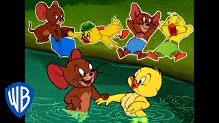 Video Tom & Jerry | Best of Jerry and Little Quacker | Classic Cartoon Compilation | WB Kids MP3, 3GP, MP4, WEBM, AVI, FLV April 2019