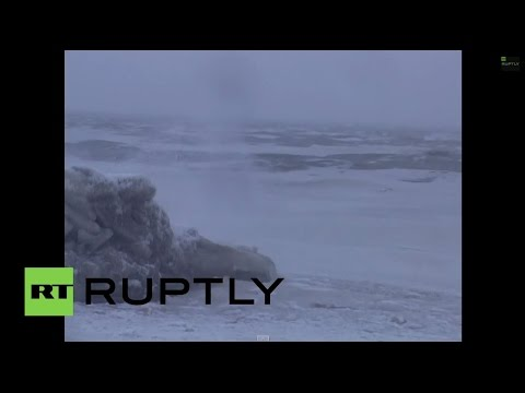 Russia: South Korean ship sinks, over 50 reported missing [EXCLUSIVE]