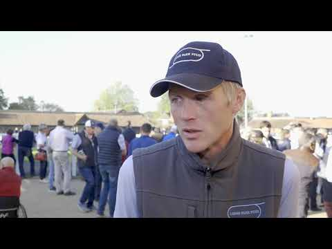 Tattersalls October Yearling Sale Book 1, 2018 Day 2 Video Review