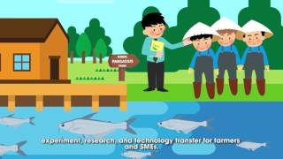 Safer pangasius on European dining tables