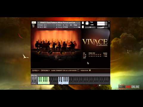 vivace - Composer Eanan Patterson takes a thorough look under the hood of Sonokinetic's