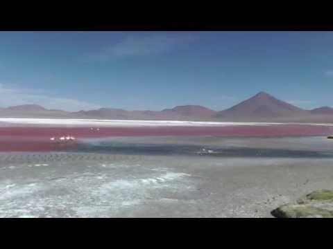 Laguna Colorada, Altiplano Boliviano (8,9)