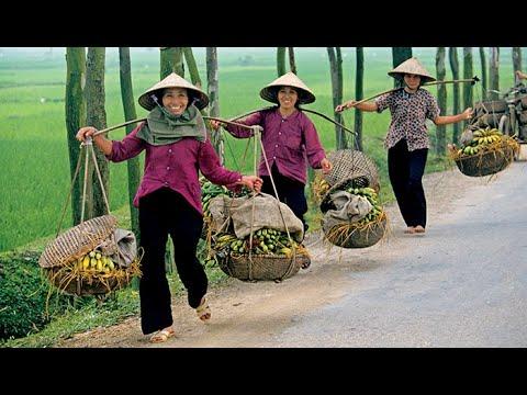 Descubrir el Mundo - Vietnam