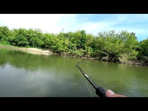 ТЕЩА БУДЕТ ДОВОЛЬНА Рыбалка на спиннинг с лодки летом 2018. - DomaVideo.Ru