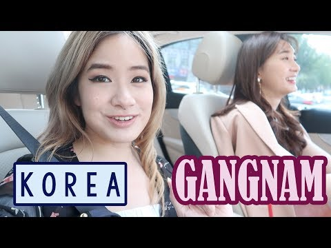Lunch & Shopping in Gangnam & Express Bus Terminal | ft. Bambigirl