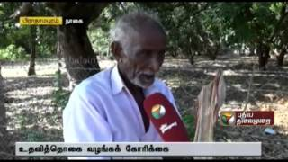 Senior citizens plan to take refuge in the collector's office at Nagapattinam
