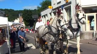 1er festival Gallo Romain de LILLEBONNE