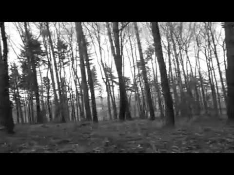Youtube Video LypSGXJPnDQ