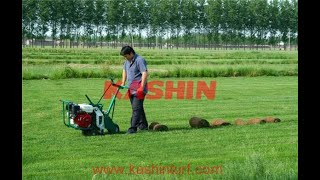 China SOD Cutter, Turf Cutter, Lawn Cutter with Good Price for Sale youtube video